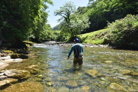 Photo pour Pêcheur volant pêchant dans la rivière de montagne - image libre de droit