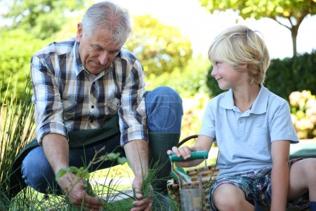 Grandpa with grandson gardening together