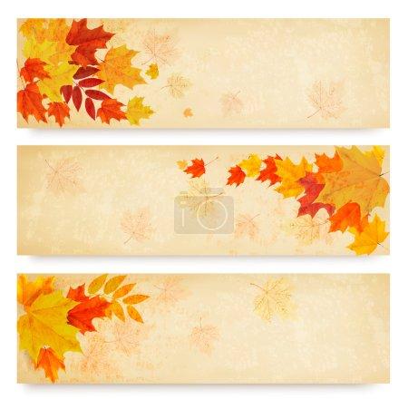 Illustration pour Trois bannières abstraites d'automne avec des feuilles de couleur. Vecteur - image libre de droit
