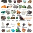 Collection from raw gemstones and crystals with na...
