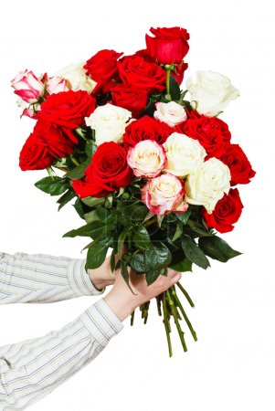Two hands giving bouquet of many roses isolated
