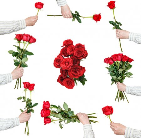 set of red rose bunches of flowers isolated