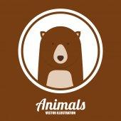 Zvířata design