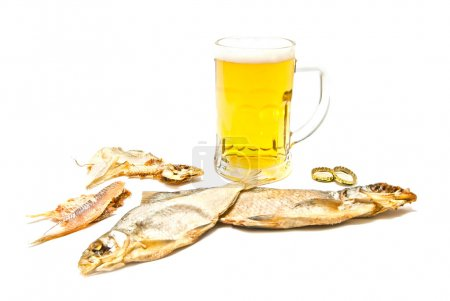 two salty fishes and beer on white