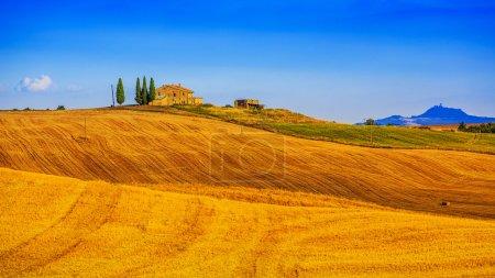 Montagnes de paysage toscanes et pré, San Quirico di Orcia, Tuscany