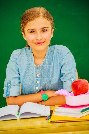 young schoolgirl in the classroom