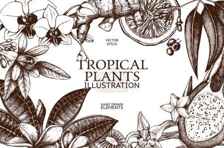 Illustration pour Conception vectorielle avec dessin à l'encre à la main des fruits tropicaux, fleurs et feuilles croquis. Vintage plantes exotiques fond - image libre de droit