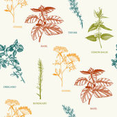 Seamless vector pattern with hand drawn spices and herbs Decorative vintage spices background