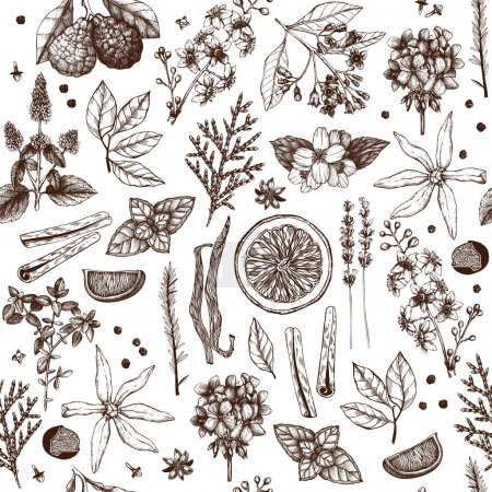 Illustration for Vector seamless pattern with hand drawn perfumery and cosmetics materials and ingredients sketch isolated on white - Royalty Free Image
