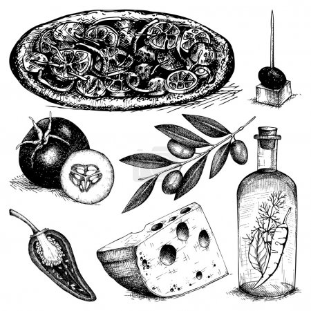 Illustration for Vector collection of ink hand drawn pizza ingredients illustration. Vintage italian food illustration. Decorative engraved food isolated on white. - Royalty Free Image
