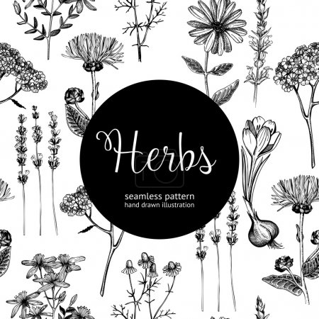 Illustration for Seamless vintage pattern with ink hand drawn medicinal herbs and plants sketch. Herbal background - Royalty Free Image