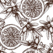 Vector seamless pattern with ink hand drawn orange fruit flowers and leaves sketch Vintage citrus background