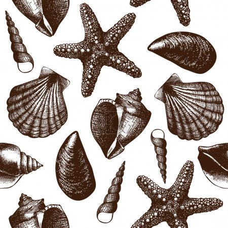Illustration for Hand drawn pattern with sea shells Vintage background with engraving elements - Royalty Free Image