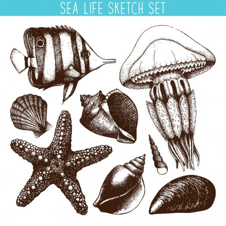 Illustration for Vector set with hand drawn small fish, sea star, jellyfish and sea shell sketches isolated on white. - Royalty Free Image
