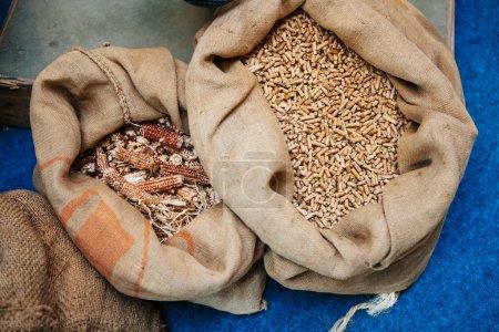 Photo pour Granulés de matière organique comprimée, ou biomasse obtenue à partir de cultures énergétiques dans leurs sacs organiques à côté de l'autre - image libre de droit
