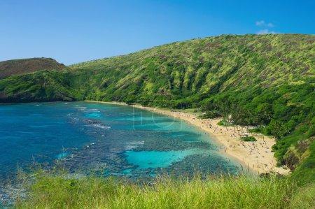 Coral reef snorkeling resort on Hawaii