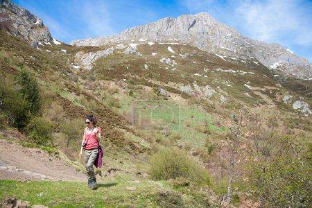 Photo pour Randonneur de brunette sport ou randonnée femme pantalon chemise rouge vert marche ou randonnée pédestre ou randonnée sur le chemin rural dans les montagnes de Picos de Europa en Asturies Espagne - image libre de droit