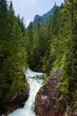 Green forest waterfall stream water Tatra mountains Carpathians