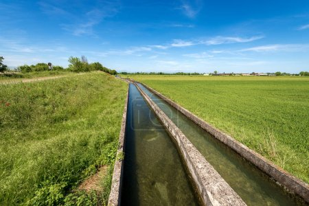 Two small concrete irrigation canals in a rural sc...