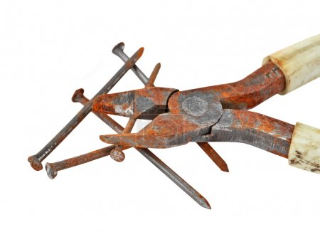 Rusty nail and wire cutter
