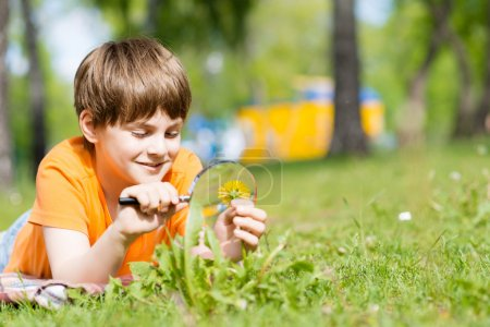 Boy with magnifying glass considers plants
