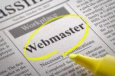 Webmester Vacancy újságban