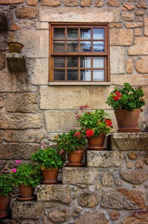 house facades decorated with flowers
