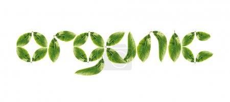 Organic word made up of green leaves