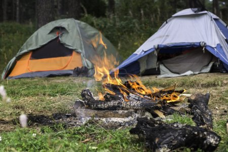 Two tents in forest