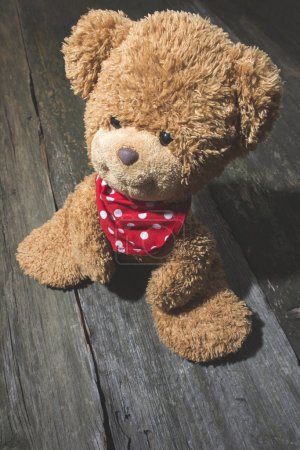 Vintage teddy Bear