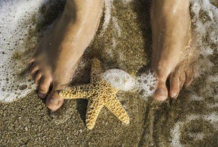 Starfish and feet on beach