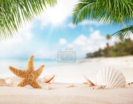 Foto de Playa de arena de verano con el océano borroso en el fondo. Hojas de palma en primer plano - Imagen libre de derechos