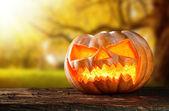 Strašidelné hallowen dýně na dřevo