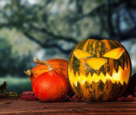 Halloween pumpkin on wooden planks