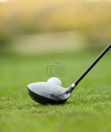 Photo pour Club de golf et balle dans l'herbe, faible profondeur de mise au point - image libre de droit