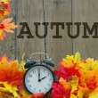 Autumn Time, Autumn Leaves and Alarm Clock with gr...