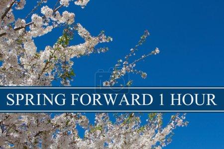 Photo pour Spring Time Change, Un arbre en pleine floraison avec ciel bleu et texte Spring Forward 1 Hour - image libre de droit