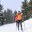 A women cross country skiing in the wintry forest...