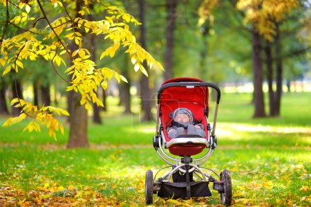 Baby sleeping in stroller in park