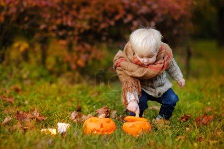 Toddler playing with jack-o-lantern