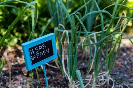 Urban garden sign