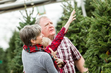 Family selecting a tree for Christmas