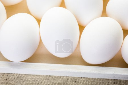 Close up of White eggs