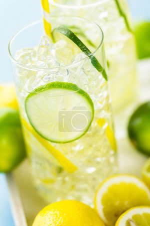 Water with fresh citrus fruits and ice