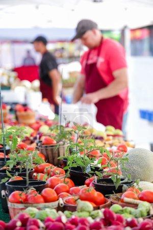 Summer farmers market on Main Street in Parker