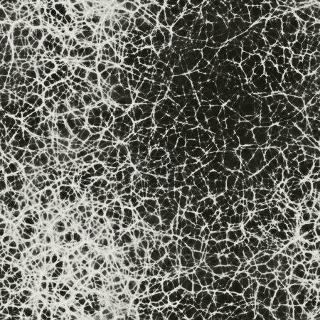 Human neurons in brain seamless 3d rendering