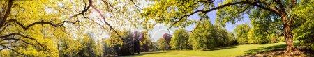 Photo pour Panorama du parc en été - image libre de droit