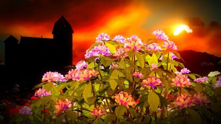 Photo for Beautiful landscape with flowers and castle - Royalty Free Image