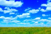 summer meadow and blue sky with white clouds.