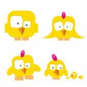 Vector funny cute birds collection birds set